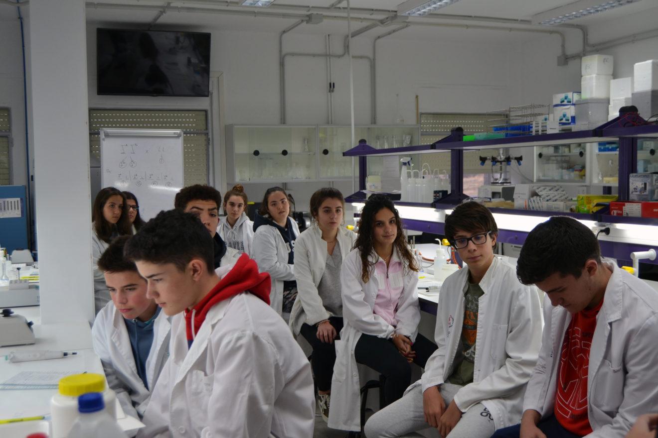 Más de una veintena de jóvenes participan en las I Jornadas de Investigación de la UCAV