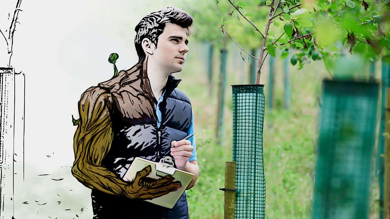 Grado en Ingeniería Forestal