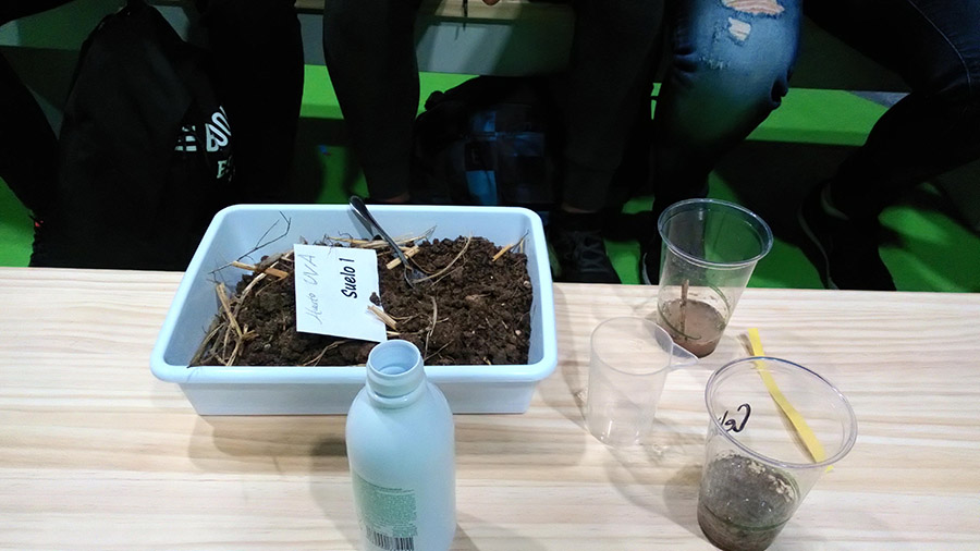 Huertos EcoDidácticos y ODS13, ¿En qué nos pueden ayudar los huertos como recurso educativo en relación al cambio climático?