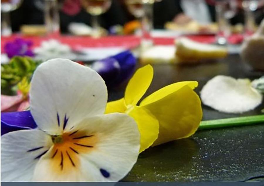 La transformación de flores ornamentales en comestibles, la investigación de la UCAV publicada en el libro del proyecto europeo Espacio T3
