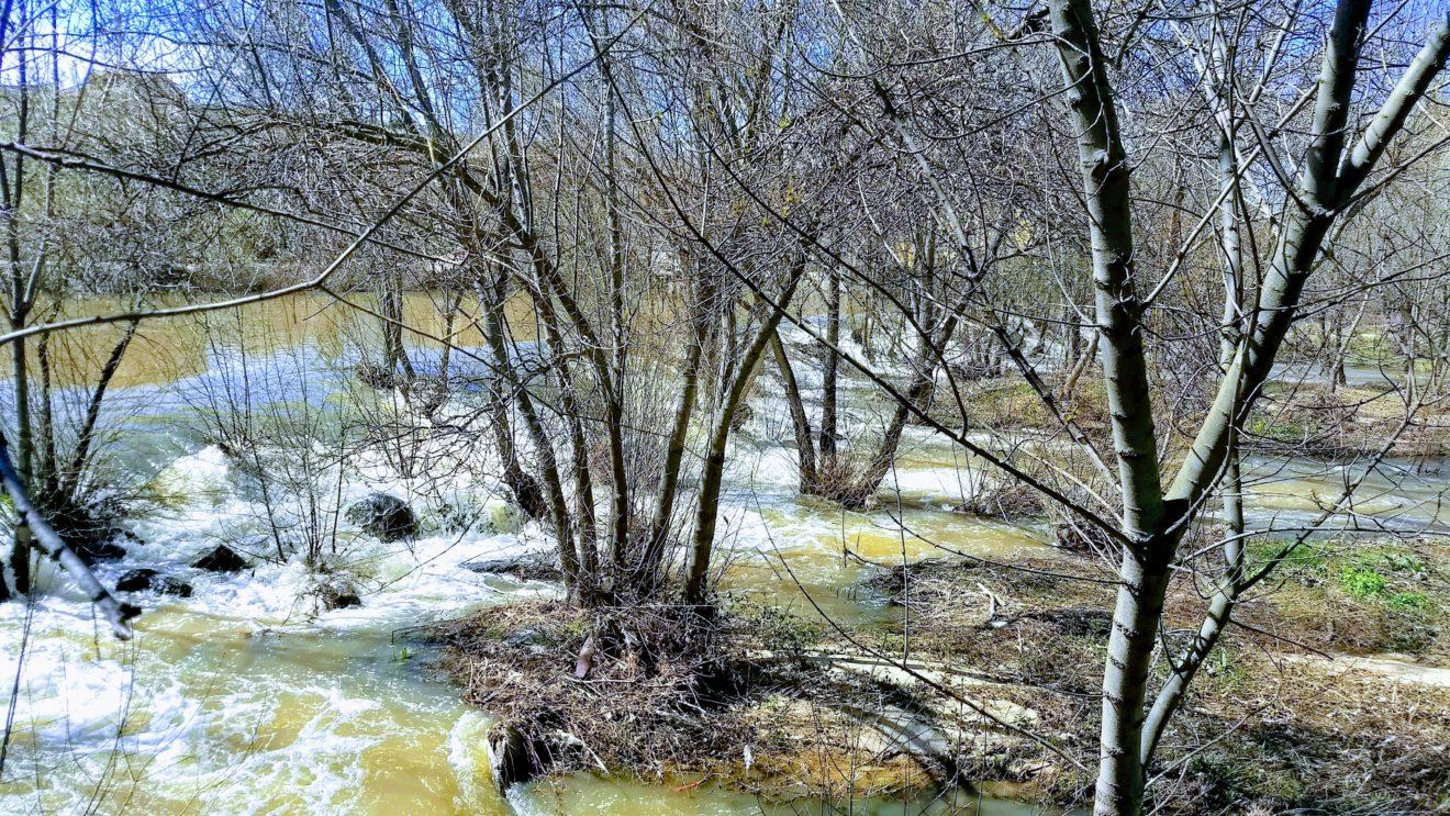 A partir de 2050, Castilla y León y la Cuenca Hidrográfica del Duero reducirán notablemente sus precipitaciones y aumentarán la temperatura media anual