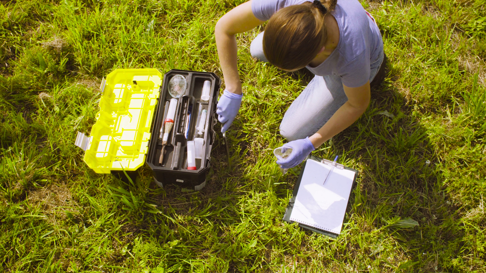 Top,View.,Woman,Ecologist,Getting,Samples,Of,Soil.,Damage,Appreciate
