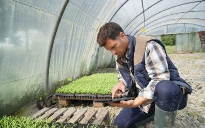 Curso de adaptación al Grado en Ingeniería Agropecuaria y del Medio Rural (En Extinción)